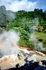 Furnas, heetwaterbron, Sâo Miguel, Azoren 1991 (wally nelemans) Tags: furnas heetwaterbron hotspring sâomiguel azoren azores 1991