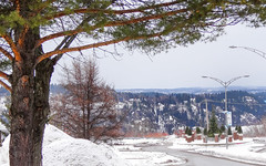 Boulevard Talbot - fin (BLEUnord) Tags: boulevard talbot chicoutimi saguenay hiver winter jour day arbre tree québec canada