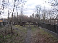 DSCN5058 (TajemniczaIstota761) Tags: abandoned railway viaduct wiadukt kolejowy