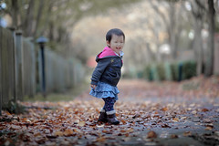 J in Autumn (michaelinvan) Tags: girl toddler naturallight canon 5d2 135mm f2 fall autumn leaves color hilarious happyface tree ground dof alley pastel soft