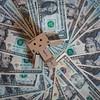 Danbo hits the jackpot (Gareth R O Dawes) Tags: dollar money cash danbo revoltech canoneos5dsr canonef8512liiusm