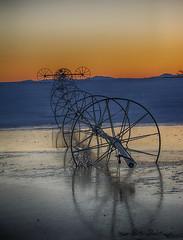 (Pattys-photos) Tags: sunrise idaho sprinkler wheel line winter ice pattypickett4748gmailcom pattypickett