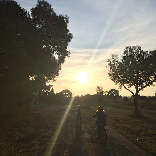 A bike ride before dinner