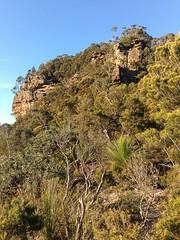 Carlon Head (upper pass) ([S u m m i t] s c a p e) Tags: australia bushwalking newsouthwales megalong narrowneckplateau ubmbc carlonhead