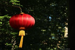 Chinese Garden in Warsaw's Baths Park (irena iris szewczyk) Tags: park light red garden chinese warsaw lantern lampion azienki royalbathspark irenairisszewczyk
