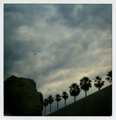 Levitated Mass (tobysx70) Tags: california county ca trees toby 2 sculpture test cloud storm color bird art film silhouette rock by museum clouds project palms polaroid sx70 for la michael los boulevard angeles miracle ominous boulder palm tip cameras installation porn type instant 20 hancock mass gen pioneer generation lacma blvd mile wilshire 2012 impossible the gen2 heizer levitated of tobyhancock impossaroid
