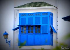 Bleu moucharabieh ..... (Olivier_Vasseur) Tags: voyage tunisia tunis sidibousaid bleu tunisie moucharabieh sidibousad