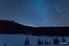 9:21 Meadow (kevin-palmer) Tags: bighornmountains bighornnationalforest wyoming nikond750 tokina1628mmf28 astronomy astrophotography night sky stars starry clear blue dark winter december solstice pine trees highway14 snow meadow orion sirius astrometrydotnet:id=nova1869393 astrometrydotnet:status=failed