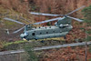 RAF Chinook, Thirlmere, 9/1/17 (TheSpur8) Tags: chinook lowlevel 2017 date uk landlocked lakedistrict helicopter military places aircraft transport anationality skarbinski