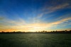 Rurais 2015 (7) (Via Net Brasil) Tags: sunrise dawn fields autumn fall morning early humid moisty morningdew glow orange blue foliage indiansummer agriculturalland farmland landscape bavaria germany october trees wheat peaplants