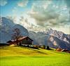 Autumn (Katarina 2353) Tags: landscape katarina2353 katarinastefanovic