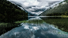 Lago Risopatron (Miradortigre) Tags: chile patagonia aysen queulat lago risopatron selva forest rainforest fria cold south sur