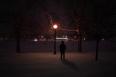 awake (nnyyxx) Tags: night snow denver colorado awake lone film sony sonya7ii 35mm