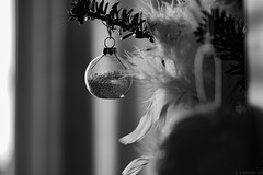Joyeux Noël (Meculda) Tags: noël boule sapin guirlande monochrome interieur sigma