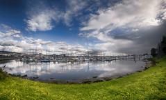 Emeryville Marina (msuner48) Tags: d750 acr5 cs4 nikcollection water clouds boats marina grass green sky blue emeryvilleca rokinon8mmf35