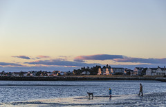(amy20079) Tags: proutsneck maine newengland nikond5100 ocean sea shore family dog walking walk winter sunset pastels