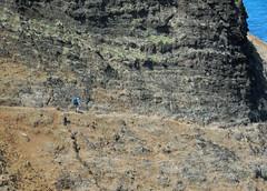 Kalalau Trail very near Crawler's Ledge (lihue1946) Tags: hike hiking cliff trail napalicoast kalalau