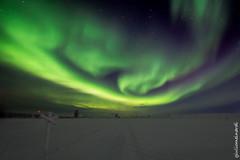 Day 198-365 Lapland (giuliomeinardi) Tags: lapland aurora boreale borealis northern lights luci notte night snow sveden norway finland finlandia rovaniemi saariselka green giulio meinardi 2470 canon tamron