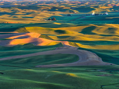 Sunrise at Steptoe Butte (kwphotos.com) Tags: landscape palouse washington state se pacific northwest southeast farm farms farmland field wheat barley grain elevator silos hills rolling green grass golden early morning sunlight hour steptoe butte brown dirt plowed harvest harvested kyle wasielewski kwphotos kwphotoscom tracks