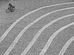 Beside The Lines (TablinumCarlson) Tags: street leica 2 woman art girl bike museum lady germany deutschland hall und bonn republic kunst north streetphotography exhibition nrw biker frau der federal velo nordrheinwestfalen fahrrad bundesrepublik dlux bicyle streifen bundeskunsthalle museumsmeile rhinewestphalia ausstellungshalle fahrradfahrer fahrradfahrerin