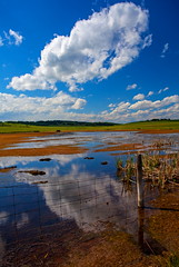 Reflected Cloud (stevenbulman44) Tags: cloud color reflection water canon landscape bluesky alberta lseries 1740f40l