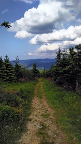 Cestička na Lysou horu.