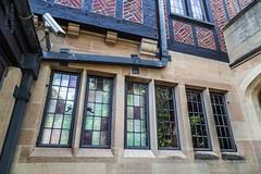 Paine Art Museum (PhotoArtMarie) Tags: green beige bricks leadedglass redwindows paineartmuseum