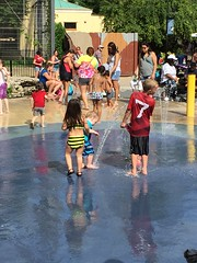 "Paul Plays in the Splashpad at Brookfield Zoo • <a style=""font-size:0.8em;"" href=""http://www.flickr.com/photos/109120354@N07/19972024096/"" target=""_blank"">View on Flickr</a>"