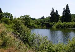 DSC05306 (Fotofreaky2013 (BUSY)) Tags: bridge see meer belgique belgië lac brug bütgenbach