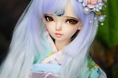 Ms Lotus <3 (Athena Roseanna Tse) Tags: bjd balljointeddoll doll abjd fairyland minifee luka lotus