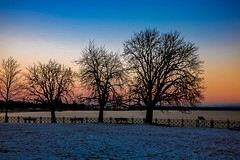 5400 Seconds of Love (yarin.asanth) Tags: sundown sunset lakeconstance trees water lake winter snapshot life gerdkozik yarinasanth story thoughts imagination moments seconds love