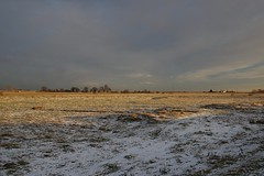 Incoming snow storm over Ham Marshes, Faversham (favmark1) Tags: snow faversham kent winter snowstorm 2017 365 365challenge day 13