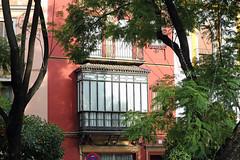 Séville (hans pohl) Tags: espagne andalousie séville architecture arbres trees fenêtres windows façades