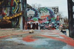 2016-12-24 02.40.51 2 (Jayme Rose Photography) Tags: austin texas graffiti wall graffitiwall spray paint spraypaint streetphotography street photoraphy canonm3 vsco vscocam portrait art artists atx keepaustinweird colorful nature outdoors instax