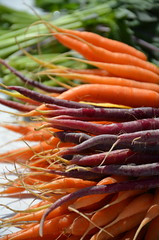 Edmonds Farmers Market (steve_scordino) Tags: carrots orange purple farmersmarket edmonds washington veggies vegetables