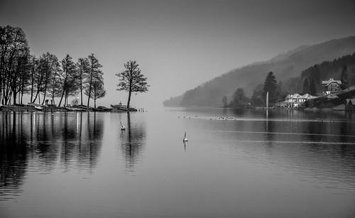 Austrian lake in the morning
