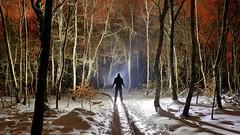 Woody (palateth) Tags: lightpainting lightart night belgique belgie belgium nophotoshop singleexposure sooc woods outdoor orange snow fagnes malchamps silhouette