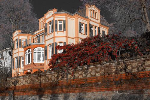 Schierstein, Wiesbaden, The Rhine River Valley, Hessen, Germany