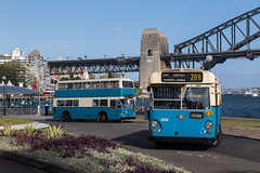 1765-1003 McMahons Point with 8128 on bridge (deanoj305) Tags: sydney bus museum leyland atlantean 1003 double decker 1765 leopard urban transit authority public transport commission uta ptc nsw au australia