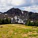 Alpine Scene  II