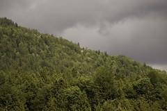 colours (sigrun_e) Tags: berg canon germany bayern deutschland bavaria eos himmel wolken grn wald bltter bume gebirge unwetter mischwald 700d sigrune