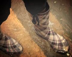 Gummistiefel im Wasser (yvonne_2.0) Tags: wet wellies smelly galoshes gummistiefel nass smelling rainboots feucht regenstiefel abkühlung