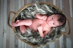 NewBorn en gezinsfotografie van PaulOudFotografie (7)