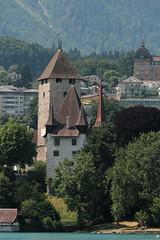 Schloss Spiez ( Château - Castle ) am Ufer des Thunersee in Spiez im Berner Oberland im Kanton Bern der Schweiz (chrchr_75) Tags: chriguhurnibluemailch christoph hurni schweiz suisse switzerland svizzera suissa swiss chrchr chrchr75 chrigu chriguhurni juli 2015 hurni150713 hochformat kantonbern berner oberland thunersee albumthunersee see lac lake lago juli2015 albumzzz201507juli kanton bern berneroberland alpensee sø järvi 湖 albumregionthunhochformat thunhochformat susisa albumschlossspiez schlossspiez spiez schloss château castle castello