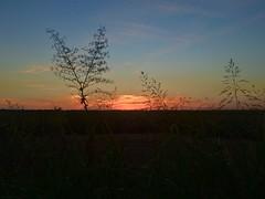 Mississippi sunset. (Bruno Abreu) Tags: