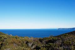 20150720-03-Cape Raoul from Lunchtime Creek campsite (Roger T Wong) Tags: winter sea sky trek outdoors nationalpark bush walk australia hike valley tasmania np bushwalk tramp campsite 2015 tasmanpeninsula capepillar sony1635 lunchtimecreek rogertwong sel1635z sonya7ii sonyilce7m2 sonyalpha7ii sonyfe1635mmf4zaosscarlzeissvariotessart