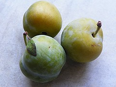 Greengages (Martha-Ann48) Tags: green yellow fruit yummy plum greengage drupe