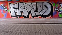 Den Haag Graffiti (Akbar Sim) Tags: denhaag thehague agga holland nederland netherlands binckhorst akbarsim akbarsimonse