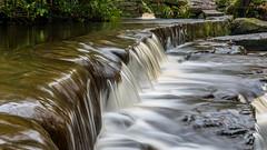 2017-01-17 Rivelin-7413.jpg (Elf Call) Tags: nikon rivelin river yorkshire water stream 18105 sheffield steppingstones waterfall d7200 blurred