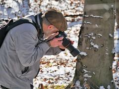Paparazzo (blogspfastatt (+3.000.000 views)) Tags: blogspfastatt pfastatt hejma foto photo janusz georgesblaszczyk